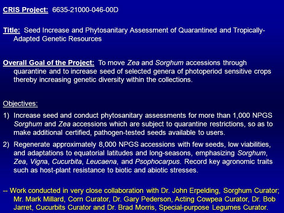 Sorghum seedstock production at the USDA-ARS, Germplasm Introduction Research Unit Quarantine Increase Non-quarantine Increase Year Planted Harvested Planted Harvested Distribution 1987 -1999 6292 5814 8201 7915 PGRCU 2000 490 486 -- -- PGRCU 2001 1310 1290 493 407 PGRCU 2002 420 418 1415 1388 PGRCU 2003 -- -- 2100 2008 PGRCU 2004 420 417 2100 2037 PGRCU 2005 420 417 1260 1218 PGRCU 2006 420 399 2520 2487 PGRCU 2007 420 420 1260 1230 PGRCU 2008 420 382 1260 1259 PGRCU 2009 224 pending 1456 pending PGRCU TOTAL 10612 10043 20599 19949 Grand Total 31211 29992