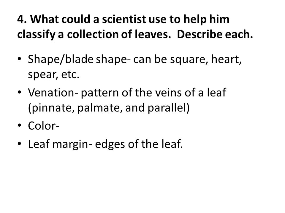 4.What could a scientist use to help him classify a collection of leaves.