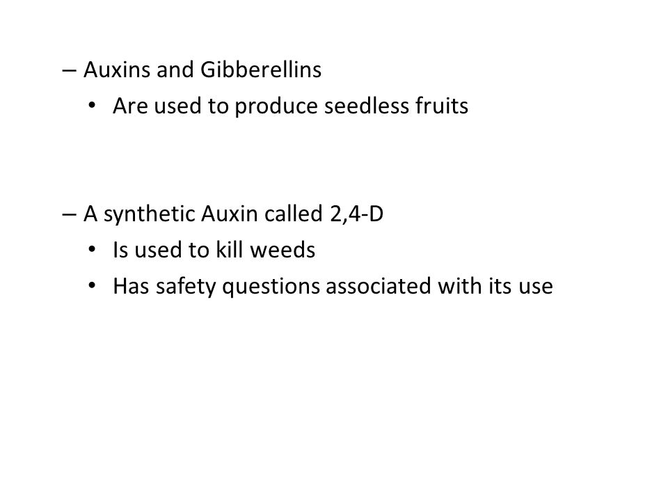 – Auxins and Gibberellins Are used to produce seedless fruits – A synthetic Auxin called 2,4-D Is used to kill weeds Has safety questions associated w