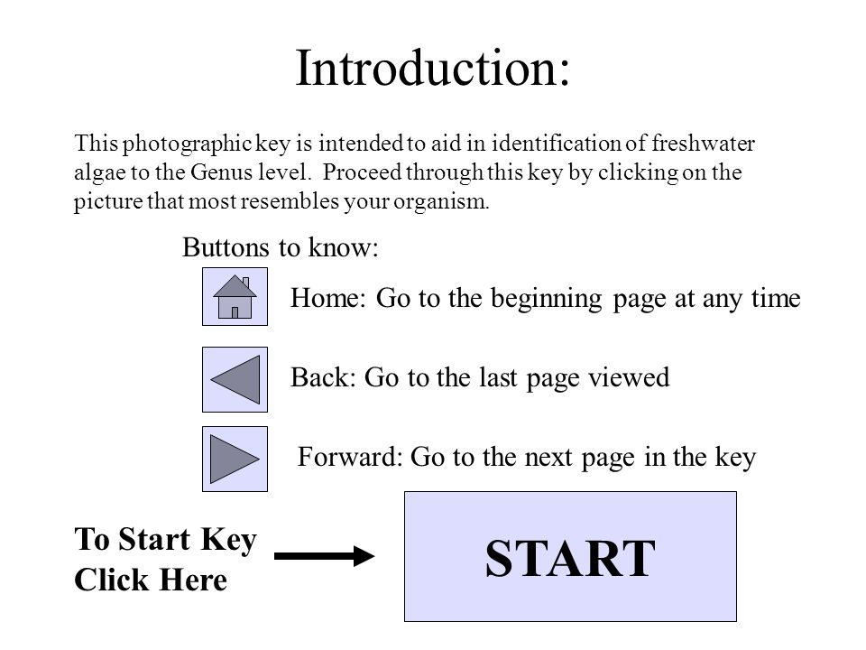 Introduction: This photographic key is intended to aid in identification of freshwater algae to the Genus level.