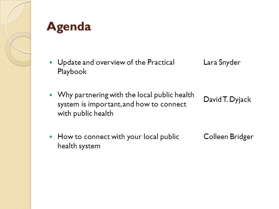 Lara Snyder Project Planner, Practical Playbook David T.