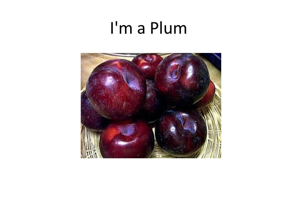 I m a Plum