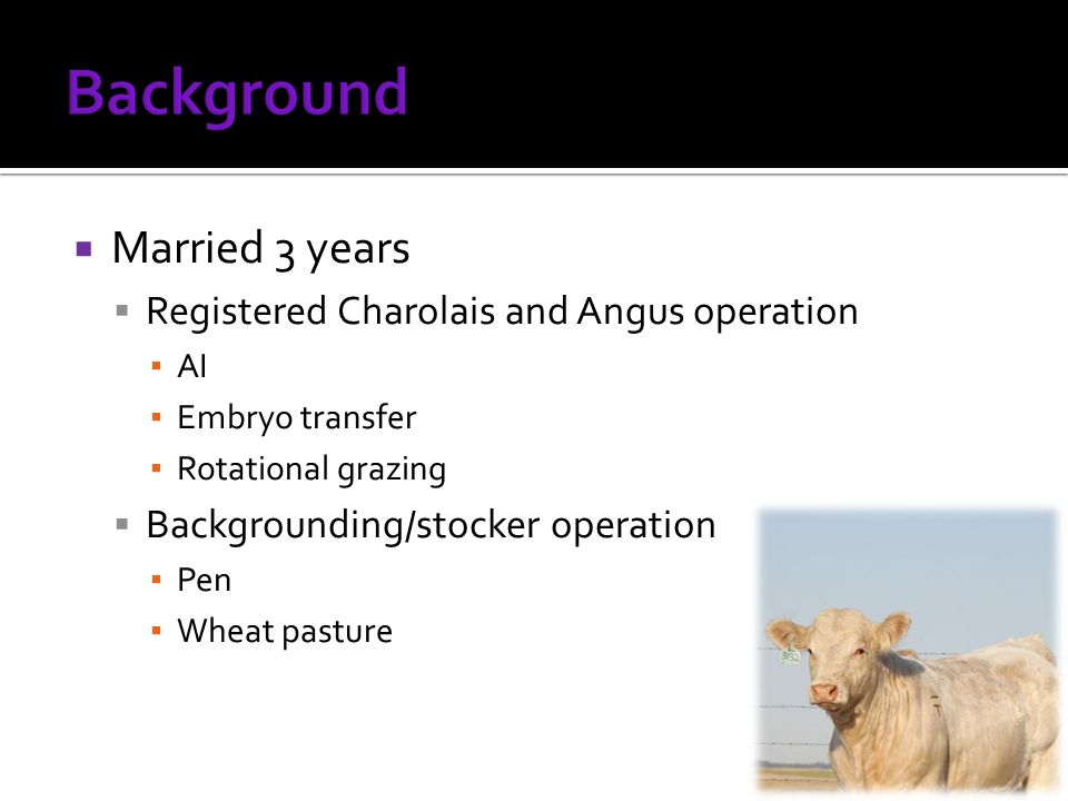  Married 3 years  Registered Charolais and Angus operation ▪ AI ▪ Embryo transfer ▪ Rotational grazing  Backgrounding/stocker operation ▪ Pen ▪ Wheat pasture