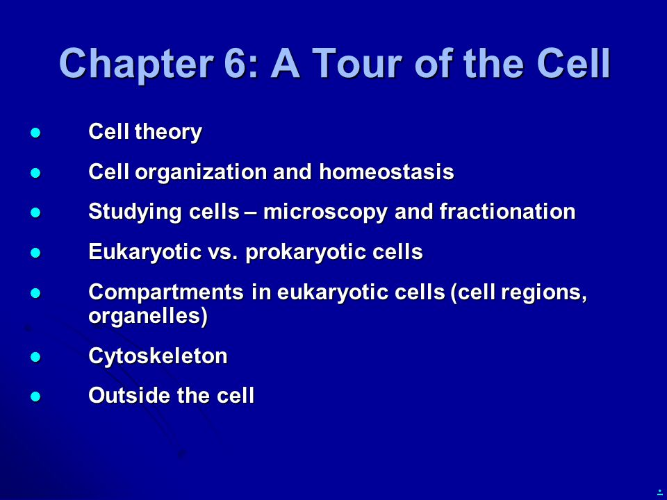 Chapter 6: A Tour of the Cell Cell theory Cell theory Cell organization and homeostasis Cell organization and homeostasis Studying cells – microscopy and fractionation Studying cells – microscopy and fractionation Eukaryotic vs.