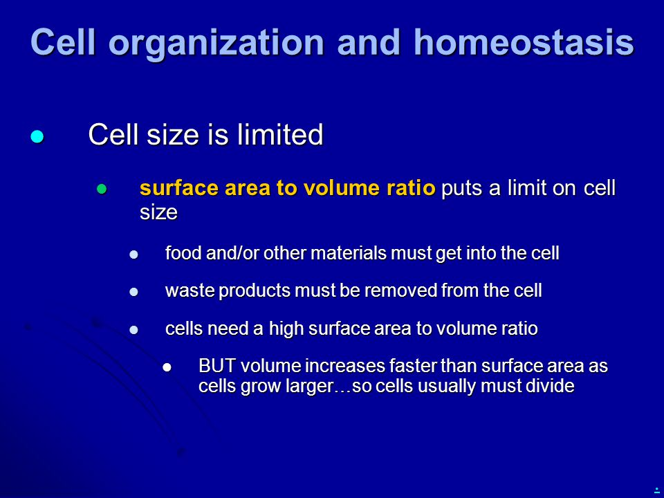. Cell organization and homeostasis Cell size is limited Cell size is limited surface area to volume ratio puts a limit on cell size surface area to volume ratio puts a limit on cell size food and/or other materials must get into the cell food and/or other materials must get into the cell waste products must be removed from the cell waste products must be removed from the cell cells need a high surface area to volume ratio cells need a high surface area to volume ratio BUT volume increases faster than surface area as cells grow larger…so cells usually must divide BUT volume increases faster than surface area as cells grow larger…so cells usually must divide
