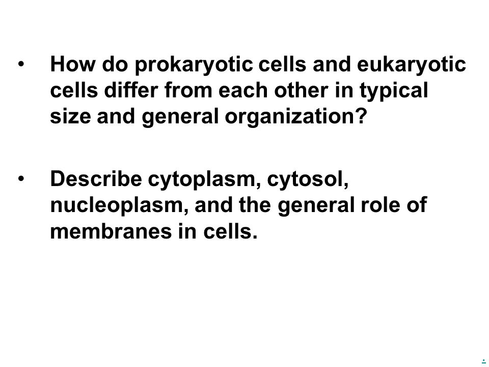 . How do prokaryotic cells and eukaryotic cells differ from each other in typical size and general organization? Describe cytoplasm, cytosol, nucleopl
