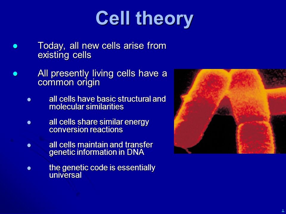 . Cell theory Today, all new cells arise from existing cells Today, all new cells arise from existing cells All presently living cells have a common o