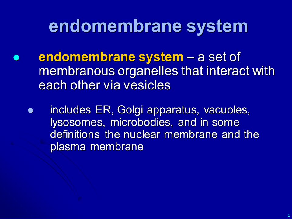 . endomembrane system endomembrane system – a set of membranous organelles that interact with each other via vesicles endomembrane system – a set of m