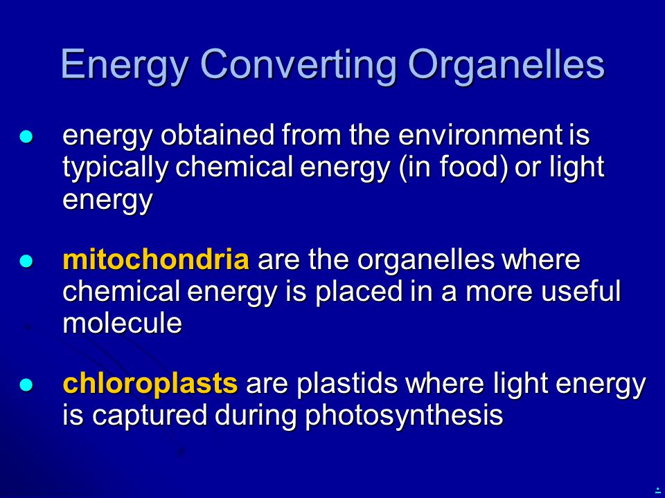 . Energy Converting Organelles energy obtained from the environment is typically chemical energy (in food) or light energy energy obtained from the en