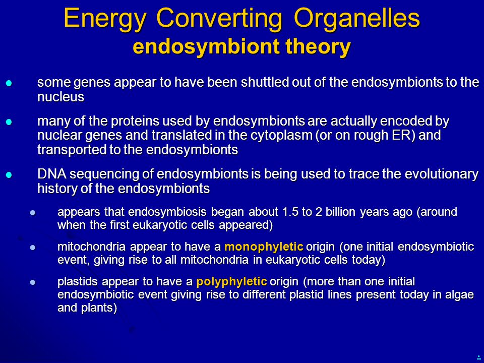 . Energy Converting Organelles endosymbiont theory some genes appear to have been shuttled out of the endosymbionts to the nucleus some genes appear t