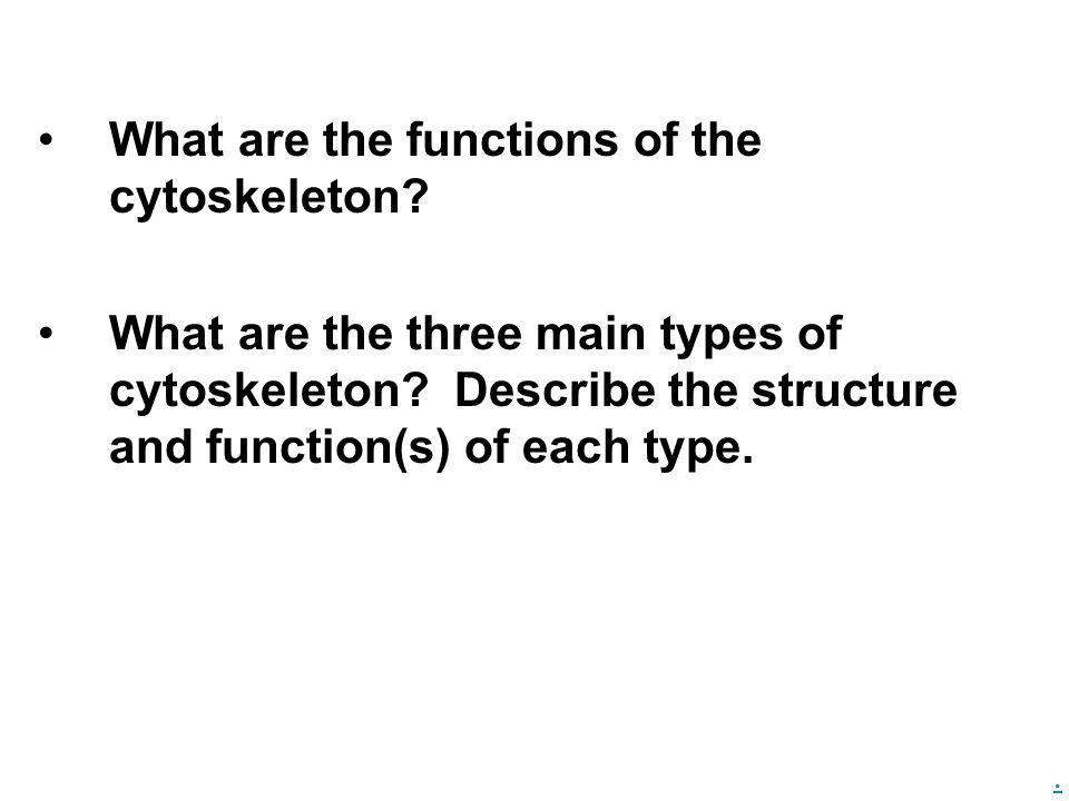 . What are the functions of the cytoskeleton? What are the three main types of cytoskeleton? Describe the structure and function(s) of each type.