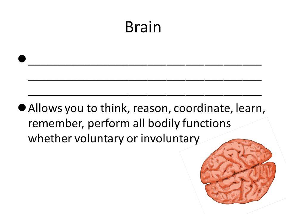 Brain Parts ______________ _______________ _______________