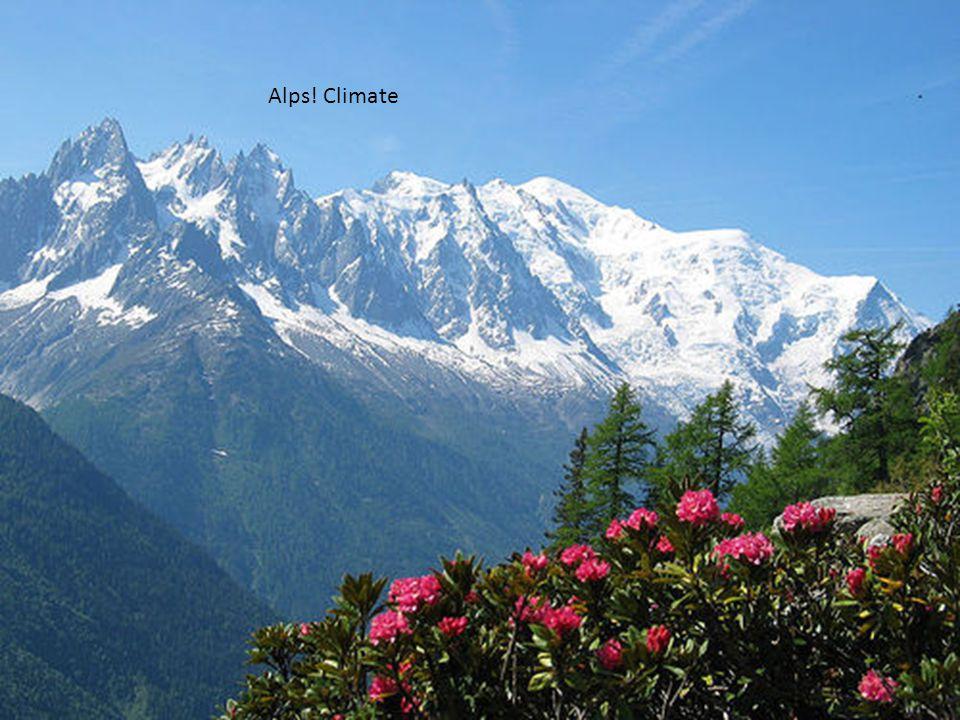 Alpine Flora/Fauna Alps! Climate