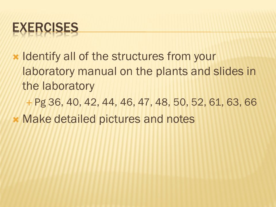  Identify all of the structures from your laboratory manual on the plants and slides in the laboratory  Pg 36, 40, 42, 44, 46, 47, 48, 50, 52, 61, 6