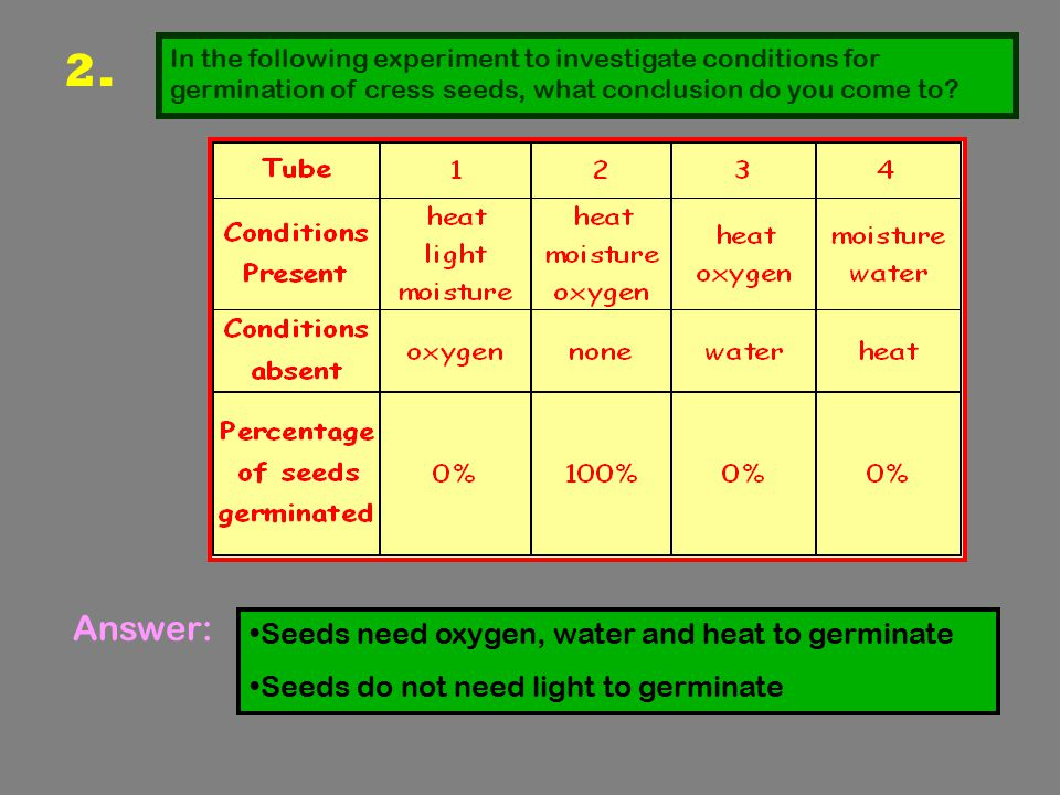 3..Why can a large seed be planted deeper in the ground than a small seed.