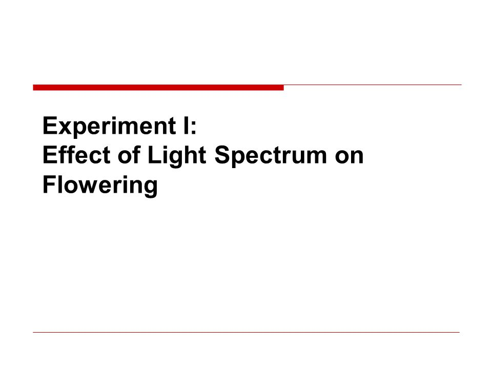 Experiment I: Effect of Light Spectrum on Flowering