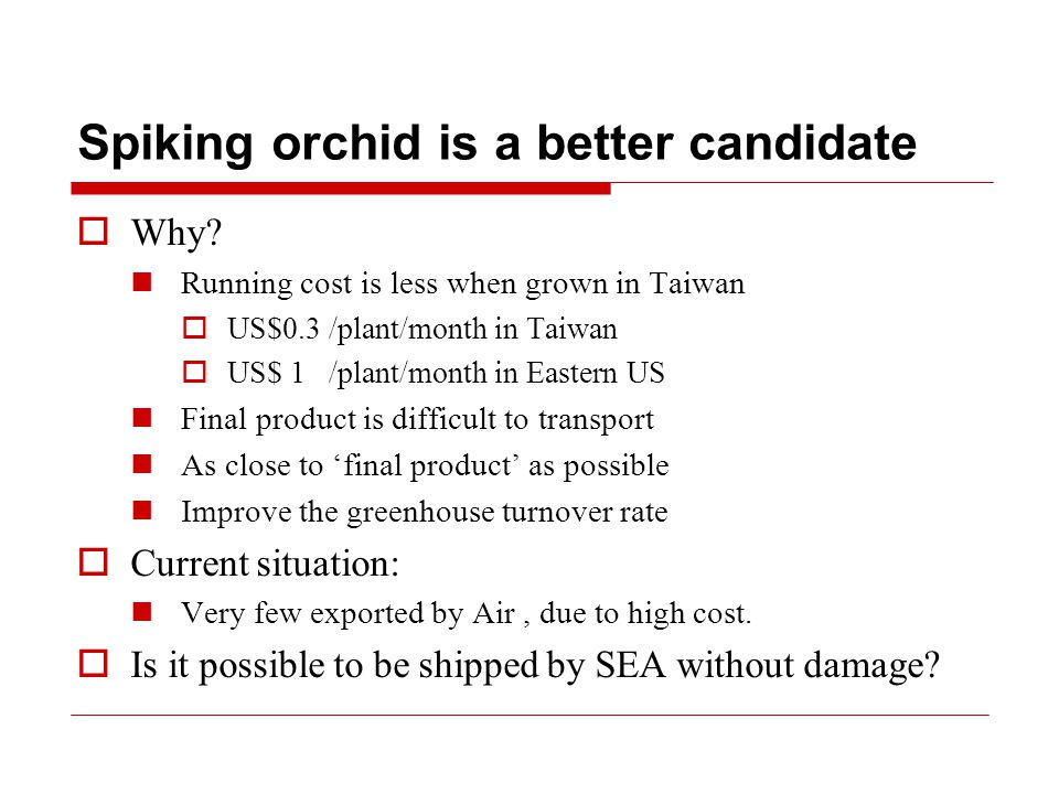 Spiking orchid is a better candidate  Why.