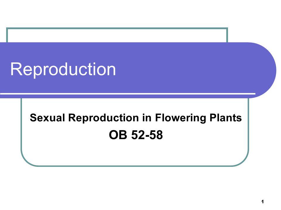 2 OB52 …locate and identify the main parts of the flower: sepals, petals, carpel and stamen… OB52OB53OB54OB55OB56OB57OB58