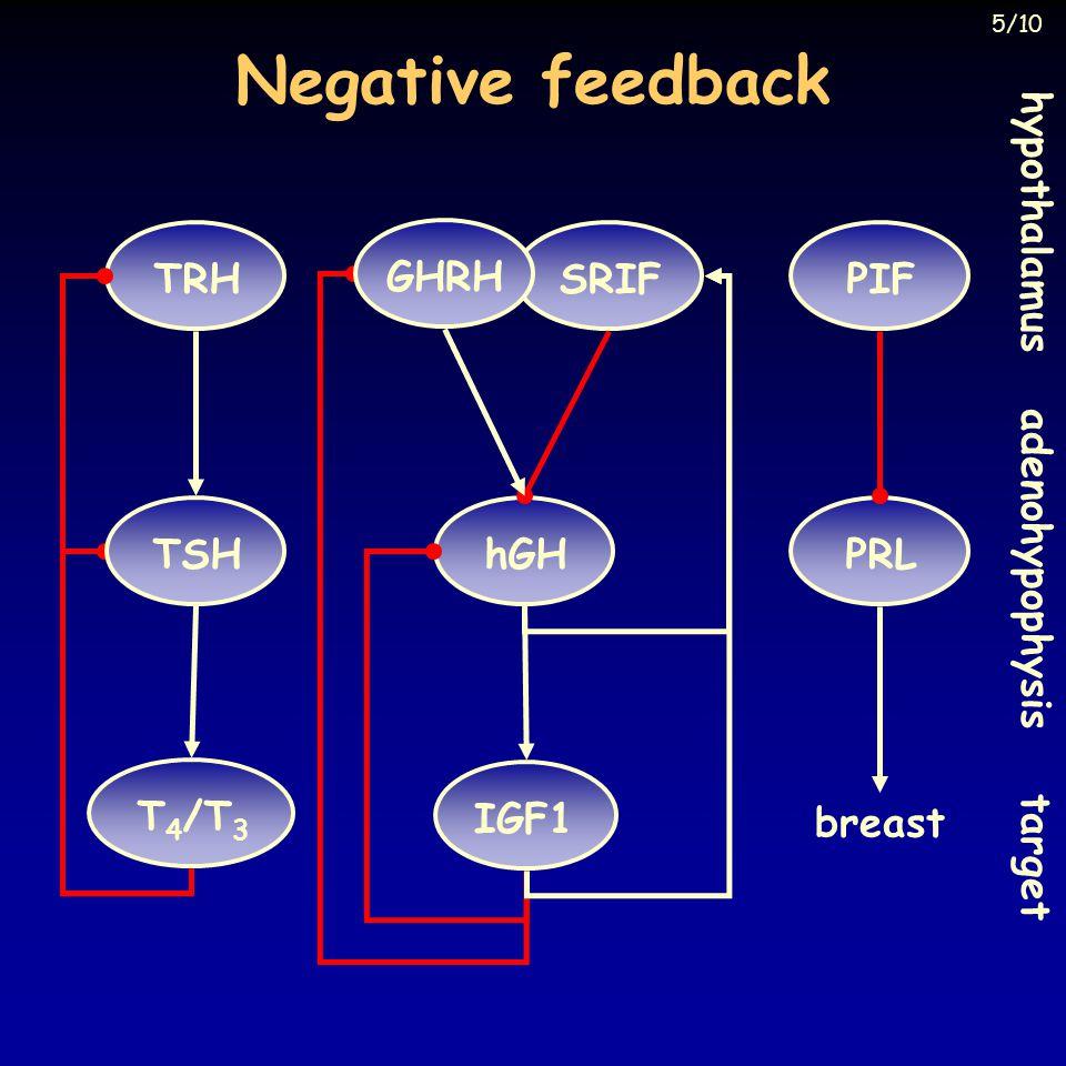Negative feedback TRH hypothalamus adenohypophysis target hGHSRIFPRL IGF1 TSH T 4 /T 3 PIF breast GHRH 5/10