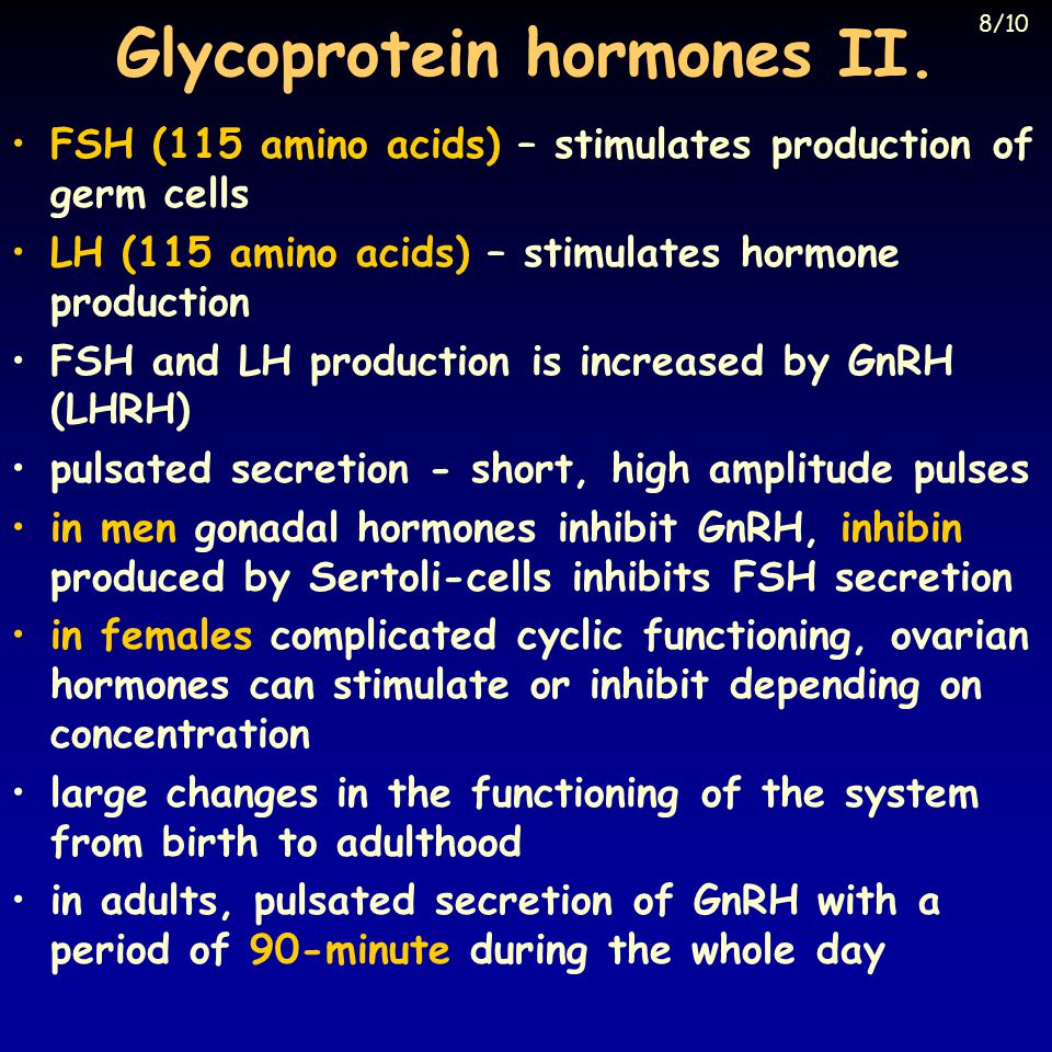 Glycoprotein hormones II. FSH (115 amino acids) – stimulates production of germ cells LH (115 amino acids) – stimulates hormone production FSH and LH