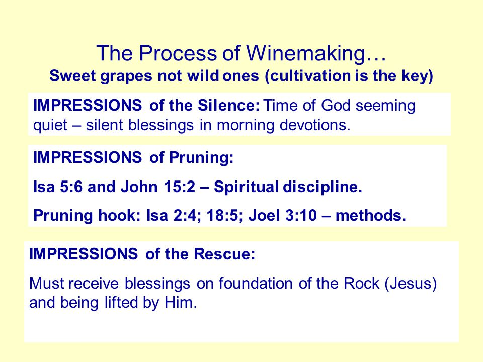 The preparation of the Vineyard… IMPRESSIONS of building Vineyard: The whole process of building/re-building vineyard is likened to national revival (Psalm 80:8-18) It shows the planting of God's people, taking away hard hearts(stones) through repentance, building walls of salvation to keep out demonic influence (foxes – Songs 2:15 -, bears – Ps 80:13- and thieves – Jer 49:9)that rob fruitfulness (grapes).