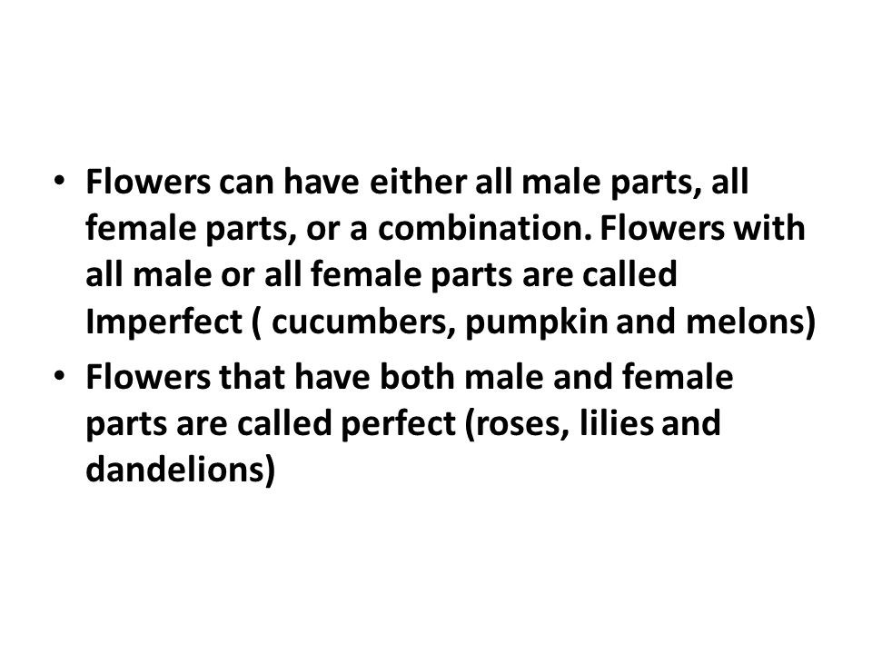 Part 5 is the female part of the flower that contains the stigma, style, ovary and ovules.