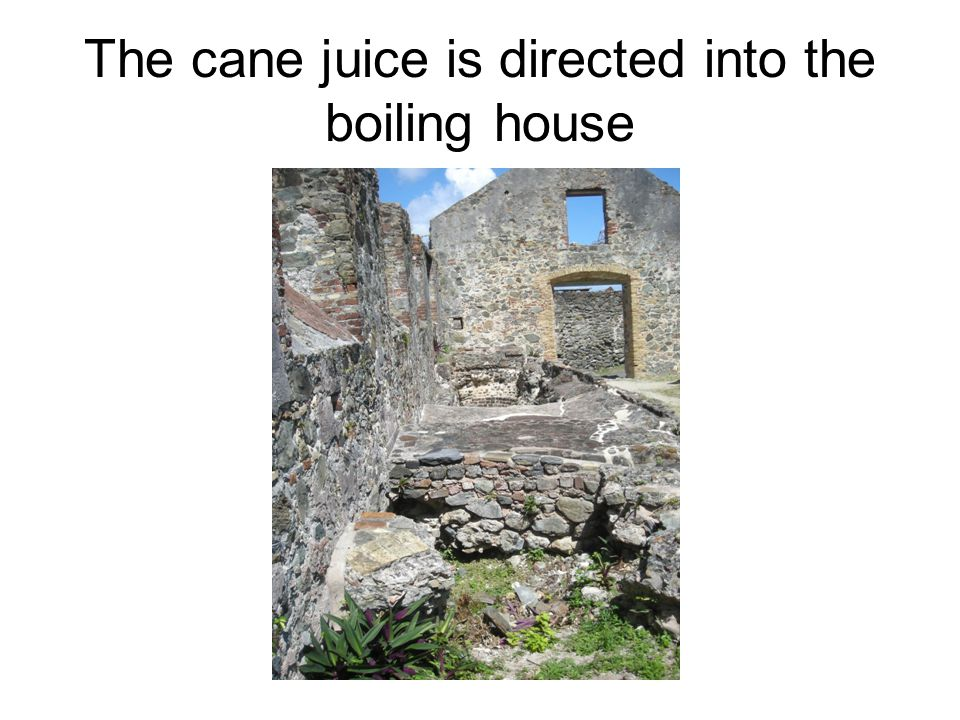 The cane juice is directed into the boiling house