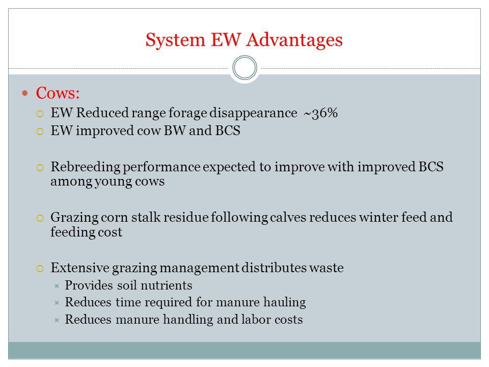 System EW Advantages Cows:  EW Reduced range forage disappearance ~36%  EW improved cow BW and BCS  Rebreeding performance expected to improve with