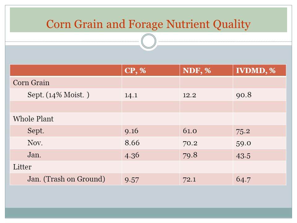 Corn Grain and Forage Nutrient Quality CP, %NDF, %IVDMD, % Corn Grain Sept. (14% Moist. )14.112.290.8 Whole Plant Sept.9.1661.075.2 Nov.8.6670.259.0 J