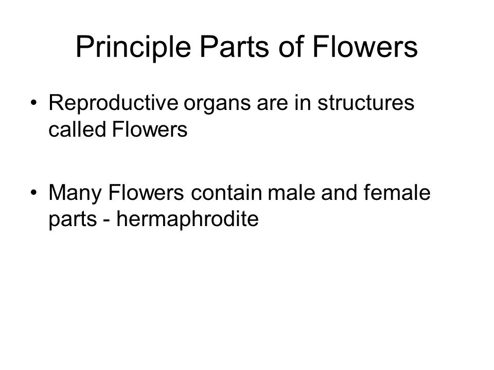 Principle Parts of Flowers Reproductive organs are in structures called Flowers Many Flowers contain male and female parts - hermaphrodite