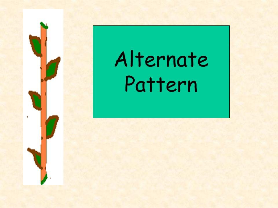 Alternate Pattern