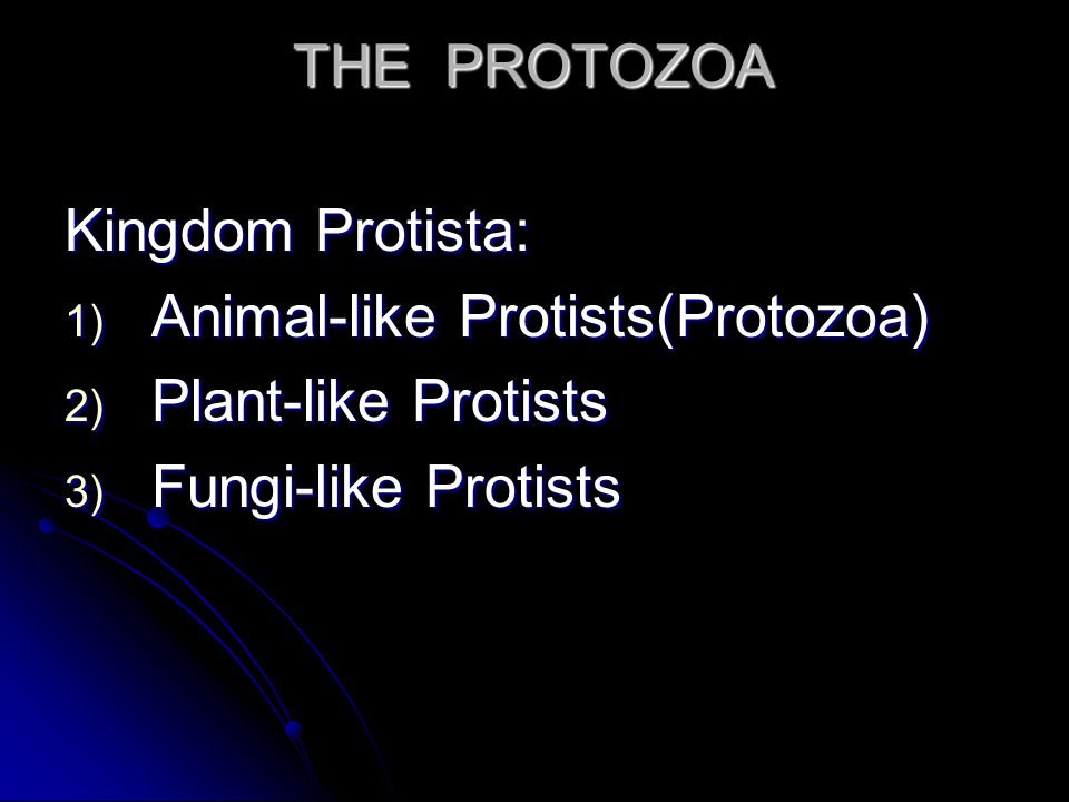 Kingdom Protista: 1) Animal-like Protists(Protozoa) 2) Plant-like Protists 3) Fungi-like Protists