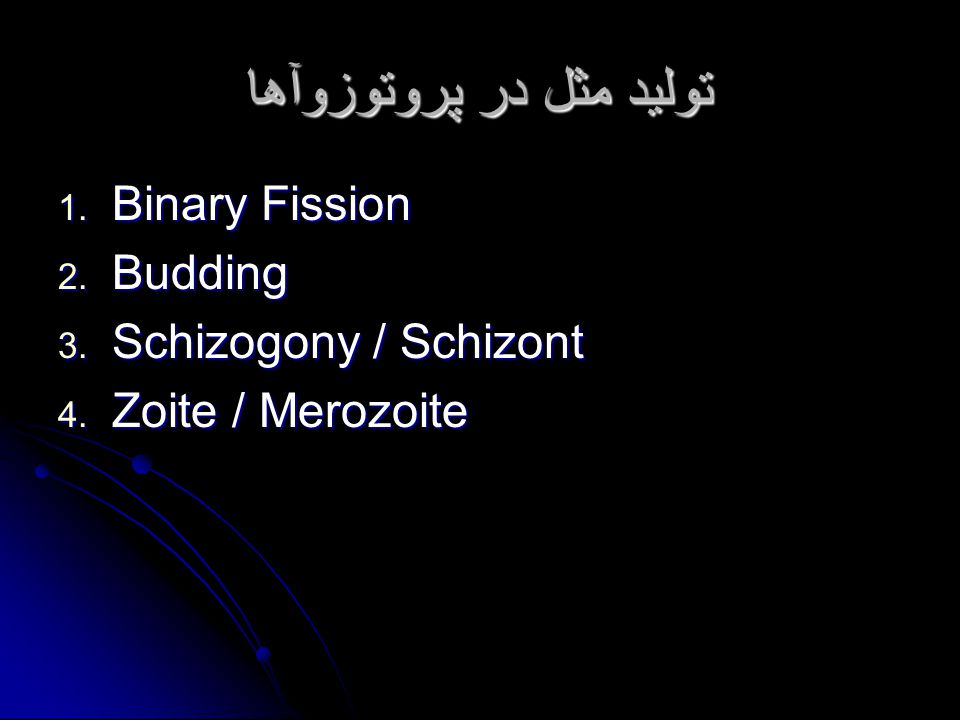 تولید مثل در پروتوزوآها 1. Binary Fission 2. Budding 3. Schizogony / Schizont 4. Zoite / Merozoite