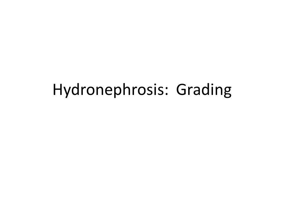 Hydronephrosis: Grading