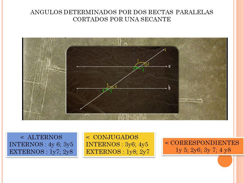 ANGULOS DETERMINADOS POR DOS RECTAS PARALELAS CORTADOS POR UNA SECANTE < ALTERNOS INTERNOS : 4y 6; 3y5 EXTERNOS : 1y7; 2y8 < ALTERNOS INTERNOS : 4y 6; 3y5 EXTERNOS : 1y7; 2y8 < CONJUGADOS INTERNOS : 3y6; 4y5 EXTERNOS : 1y8; 2y7 < CONJUGADOS INTERNOS : 3y6; 4y5 EXTERNOS : 1y8; 2y7 < CORRESPONDIENTES 1y 5; 2y6; 3y 7; 4 y8 < CORRESPONDIENTES 1y 5; 2y6; 3y 7; 4 y8