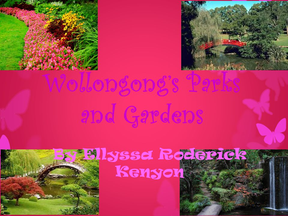 Wollongong's Parks and Gardens By Ellyssa Roderick Kenyon