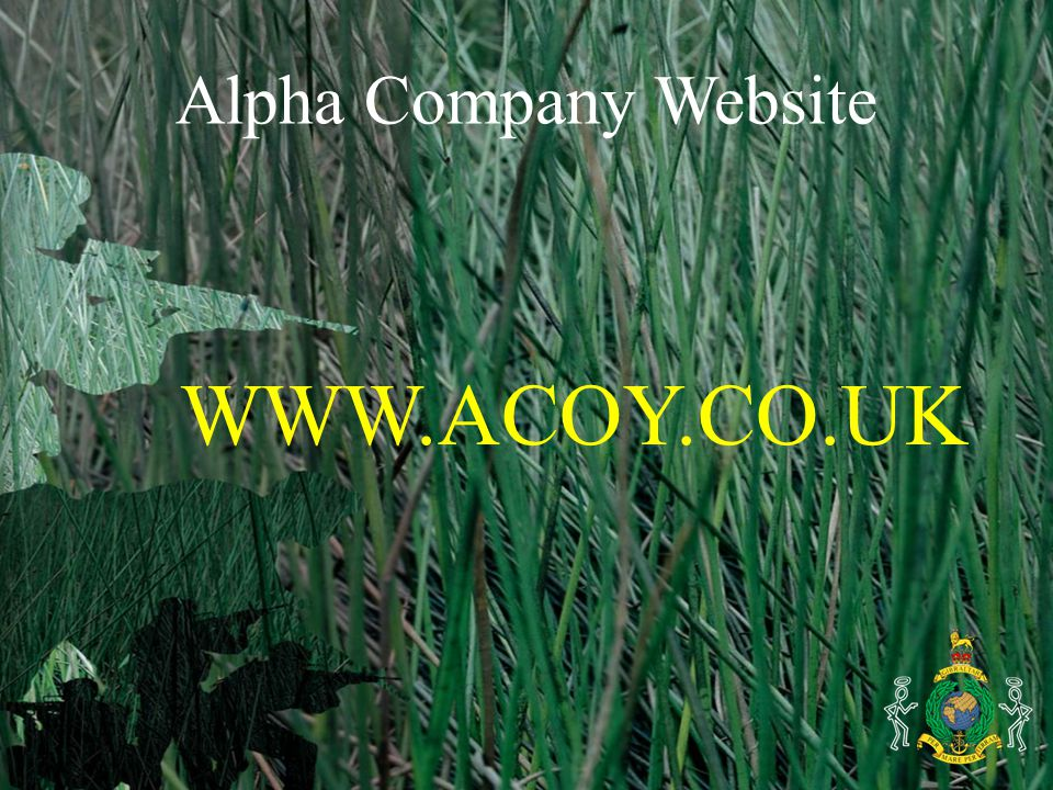 Alpha Company Website WWW.ACOY.CO.UK