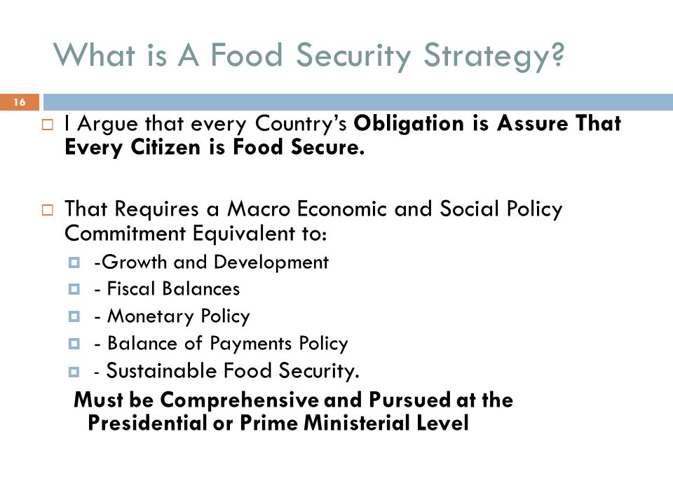 What is A Food Security Strategy.
