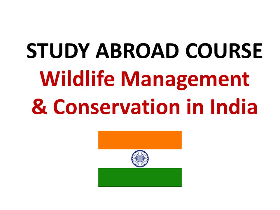 STUDY ABROAD COURSE Wildlife Management & Conservation in India