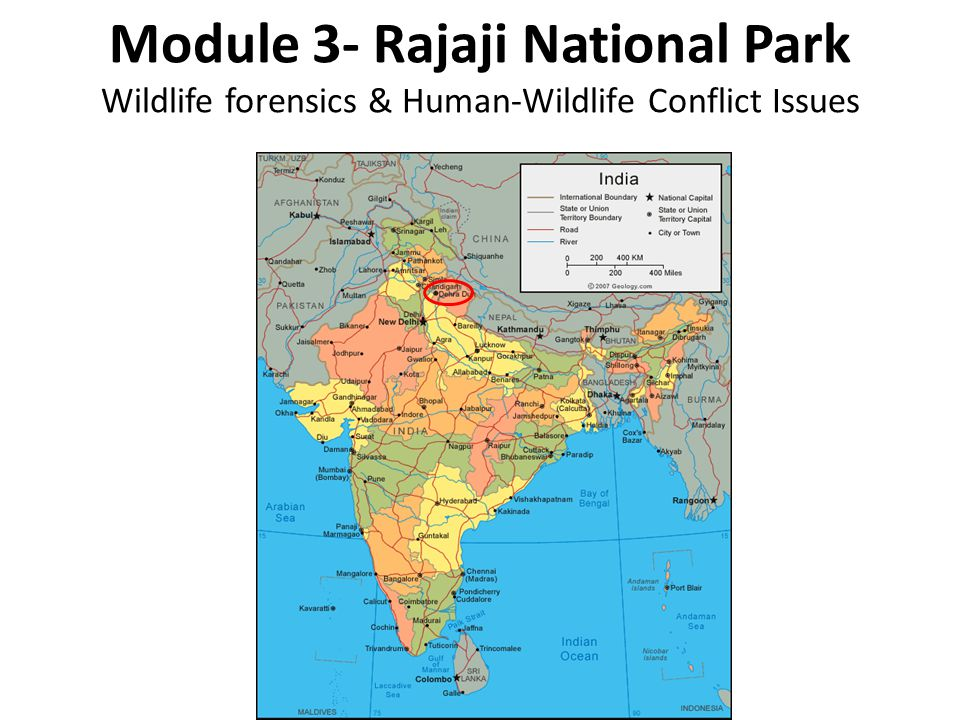 Module 3- Rajaji National Park Wildlife forensics & Human-Wildlife Conflict Issues
