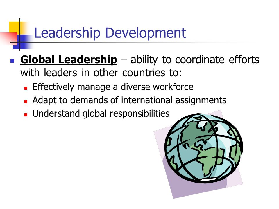 Global Leadership – ability to coordinate efforts with leaders in other countries to: Effectively manage a diverse workforce Adapt to demands of international assignments Understand global responsibilities Leadership Development