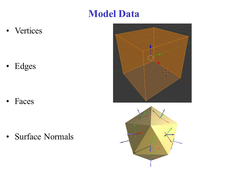 Model Data Vertices Edges Faces Surface Normals