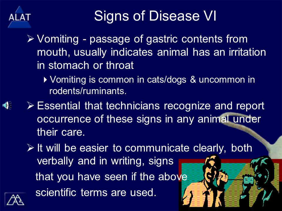Signs of Disease VI  Vomiting - passage of gastric contents from mouth, usually indicates animal has an irritation in stomach or throat  Vomiting is