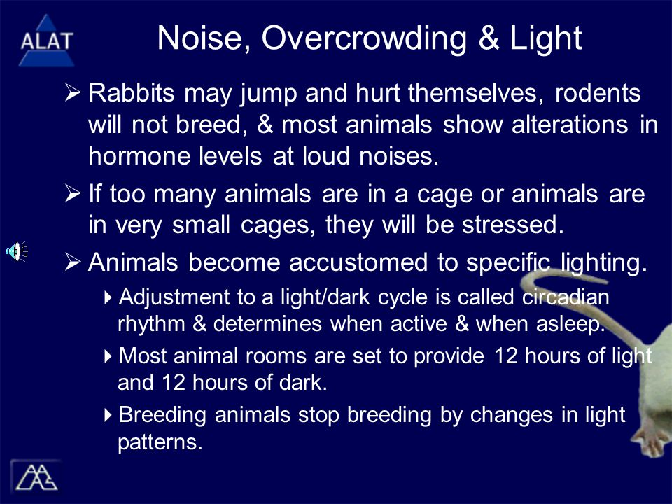 Noise, Overcrowding & Light  Rabbits may jump and hurt themselves, rodents will not breed, & most animals show alterations in hormone levels at loud