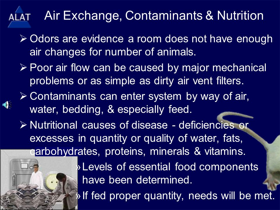Air Exchange, Contaminants & Nutrition  Odors are evidence a room does not have enough air changes for number of animals.  Poor air flow can be caus