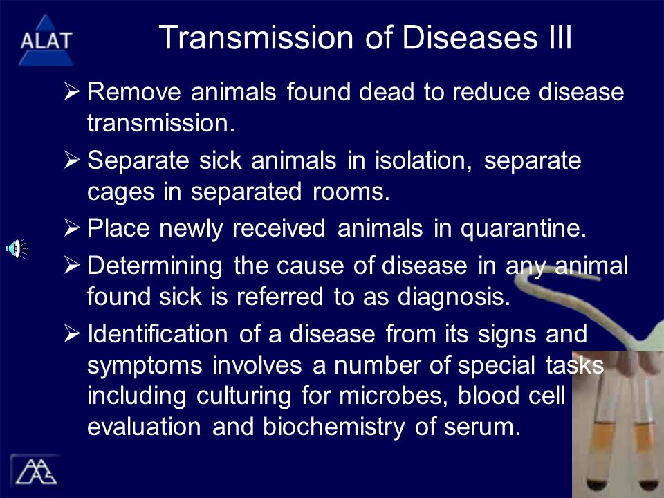 Transmission of Diseases III  Remove animals found dead to reduce disease transmission.  Separate sick animals in isolation, separate cages in separ