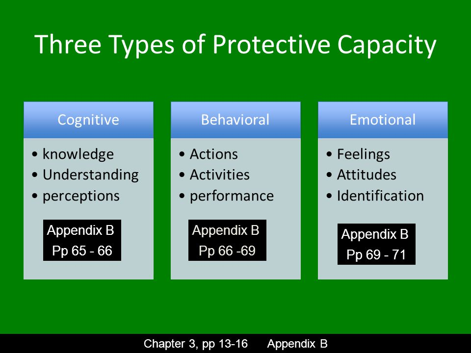 Three Types of Protective Capacity Cognitive knowledge Understanding perceptions Behavioral Actions Activities performance Emotional Feelings Attitudes Identification Chapter 3, pp 13-16 Appendix B Appendix B Pp 65 - 66 Appendix B Pp 66 -69 Appendix B Pp 69 - 71