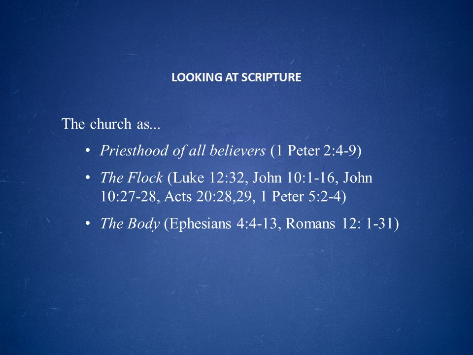 LOOKING AT SCRIPTURE The church as...
