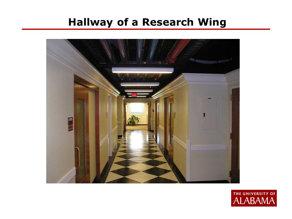 Hallway of a Research Wing