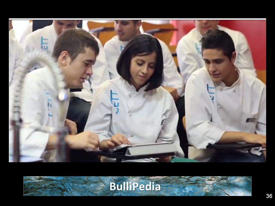 BulliPedia 36